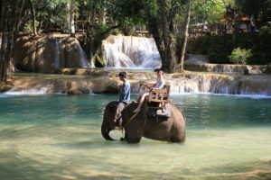 Tad-Sae-Waterfalls-elephant-riding