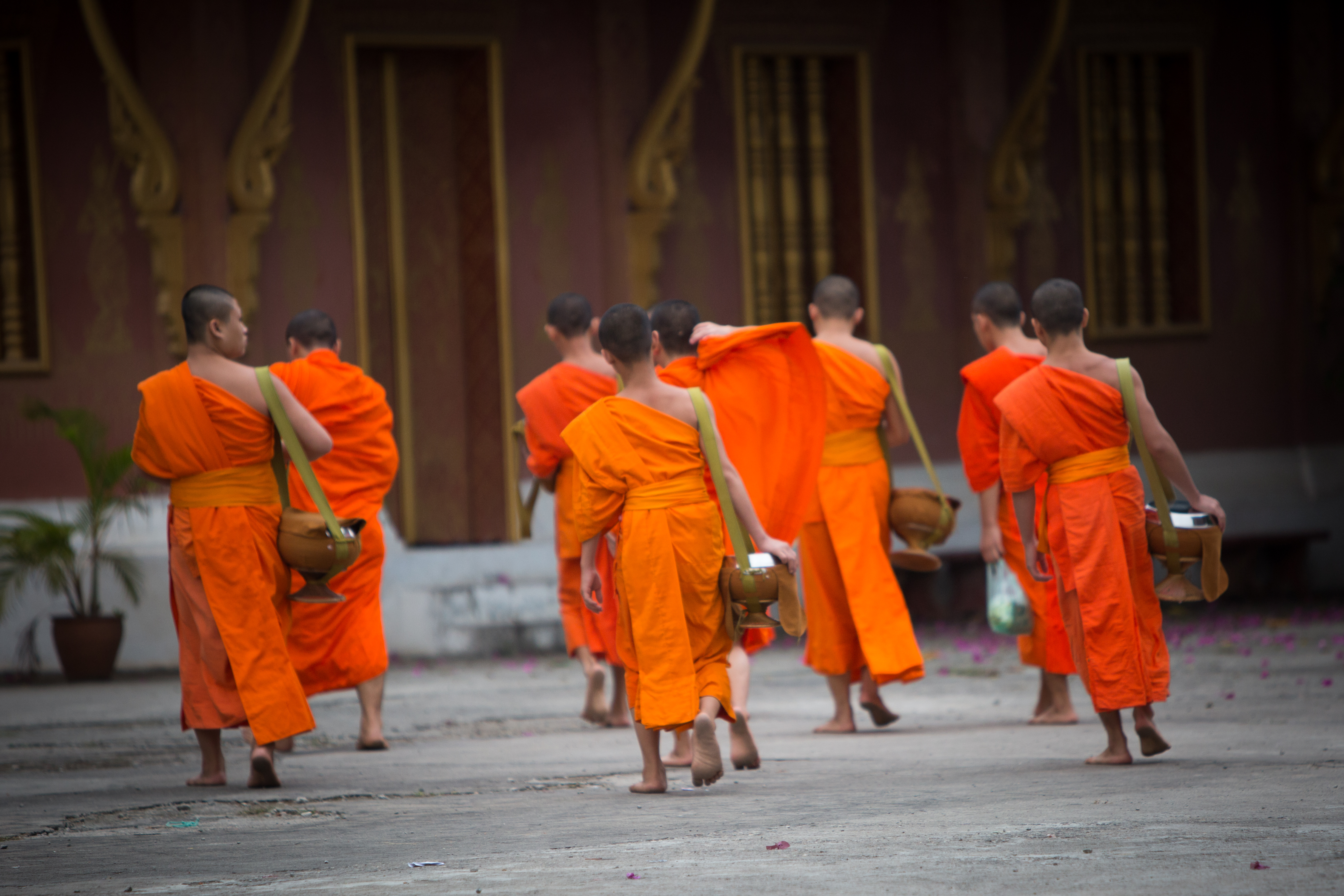 monks returning to temple after alms giving